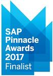 SAP Business One Pinnacle Award 2017